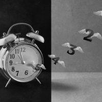 Время летит... :: Evgeniy Belkov