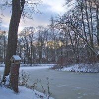 Зимний день узором вяжется... :: Senior Веселков Петр