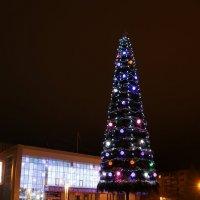 Новый год в Заполярье :: Ольга