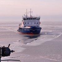 Ледокол Капитан Чечкин (Icebreaker Chechkin) :: Дмитрий Олегович