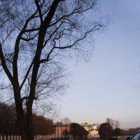 Кусково ранней весной :: Анна Воробьева