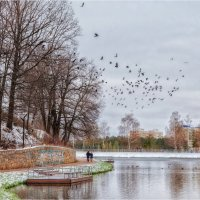 Осень :: Андрей Козлов