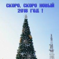 Последние приготовления :: Анатолий Чикчирный