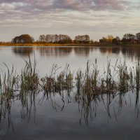 Осеннее озеро. :: Андрей Николаевич Незнанов