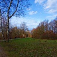 Конец декабря....зима кажется забыла о нас.... :: Galina Dzubina