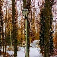 Одиночество фонаря и лавочки :: Леонид Абросимов
