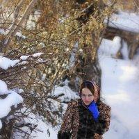 """Снимок из серии """"Красивая зима."""" :: Елена Прихожай"""