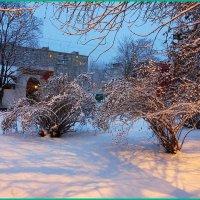 Утренний вид :: Николай Дони