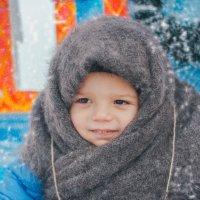 зимушка :: Olga Schejko