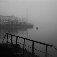 Погода декабря :: Елена Ерошевич
