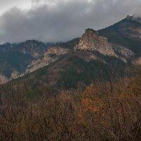 Склоны южной гряды (Ялта, декабрь) :: Сергей Яворский