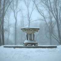Городской фонтан зимой. :: Алена Малыгина