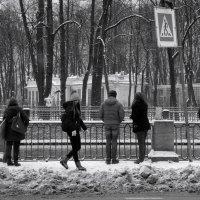 Времена года: зима 2017 :: sv.kaschuk