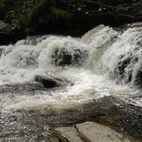 водопад :: Galina Dolkina