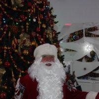 Поздравление от Деда Мороза :: Дмитрий Солоненко