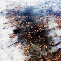 Осенне-зимний этюд. :: Sergii Ruban