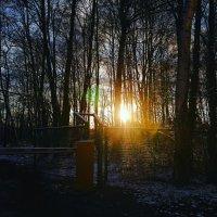 Зимний закат :: Максим Трофименко
