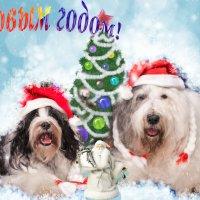 Поздравляем всех с НОВЫМ ГОДОМ! Счастья и радости! :: Лариса Батурова