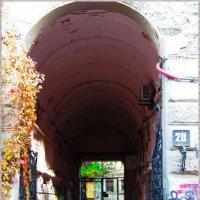 Старая арка.... :: Любовь К.