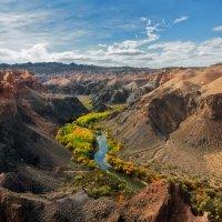 чарынский каньон (195 км к востоку от Алматы) :: vladimir polovnikov