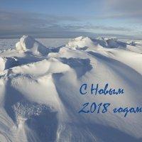 Всех друзей с Новым 2018 годом! (5) :: Владимир Шибинский
