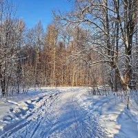 Зима :: Любовь Чунарёва