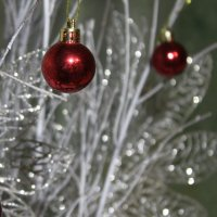 Новогоднее отражение... :: Ирина Атаманская