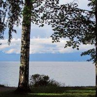 Финский залив в июле :: Ирина Румянцева