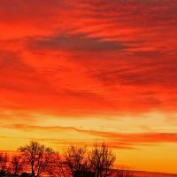 Декабрьский закат над городом :: Светлана