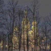 Волшебный свет :: bajguz igor