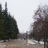 1.01.18 :: Алёна Савина