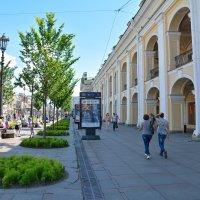Прогулки по Санкт-Петербургу (этюд 20) :: Константин Жирнов