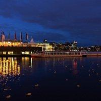 Синяя ночь на озере Альстер :: Nina Yudicheva