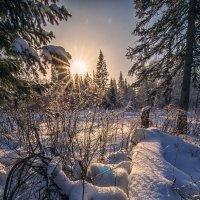 Зимний пейзаж :: Аня ZагайноVа