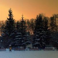 На созвоне 2 января ... :: Мила Бовкун