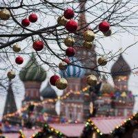 Новогодняя Москва :: Александр Степовой