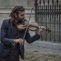 Уличный скрипач :: Александр