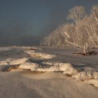 Зимний берег Енисея. :: Марина Фомина.