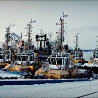 Новогоднее морское... :: Кай-8 (Ярослав) Забелин