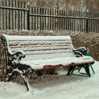 Долгожданный снег. :: Анатолий. Chesnavik.