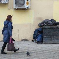 Эдакая ... пастораль с голубем :: Александр Степовой