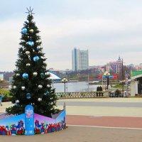 Аномально тёплый Новый год! :: Ирина Олехнович