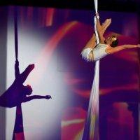 Акробатический мир изящества и чудес :: Катерина Клаура