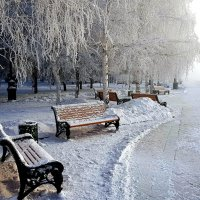 Морозный день :: Антон Сергиенко