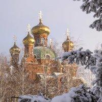 Морозным днем ... :: Олег Кондрашов