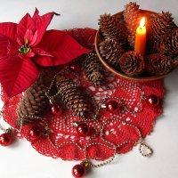 Рождество и Рождественская звезда - Пуансеттия :: super-krokus.tur ( Наталья )