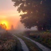 По востоку пышет зарево...© :: Roman Lunin
