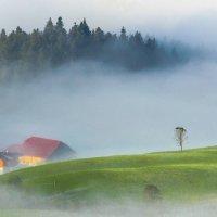 Рассветные туманы :: Андрей Лукашенко