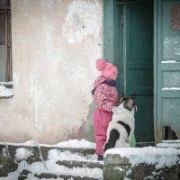 В ожидании решения (маленькие жители демидовской усадьбы) :: Евгения Кирильченко