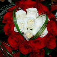 Букет роз :: Алла ZALLA
